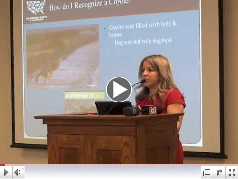 Solving Problems with Coyotes in Geneva