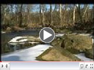 Fairfax County Stormwater Management