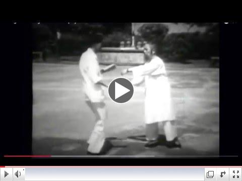 Tai Chi Push Hands Play with Masters