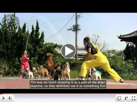 Meet The Record Breakers: Uchida Geinousha -- handler of the most dogs skipping on a rope