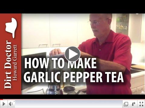 Garlic Pepper Tea