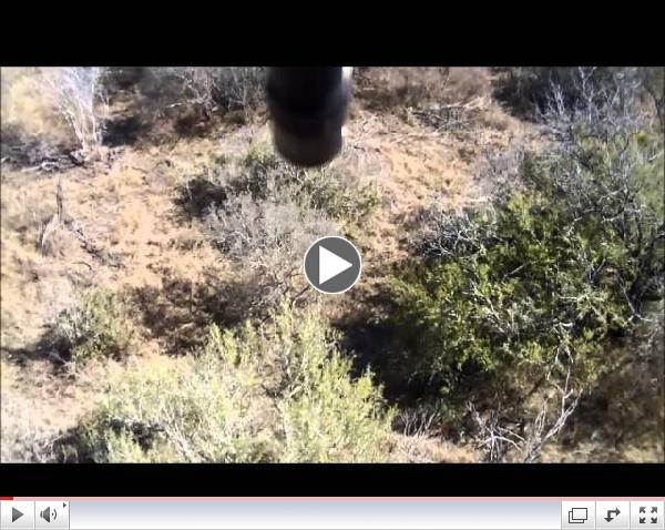 Telarana Ranch Hog Hunting - Death from Above!