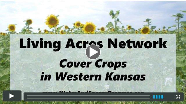 Living Acres Network: Cover Crops in Western Kansas