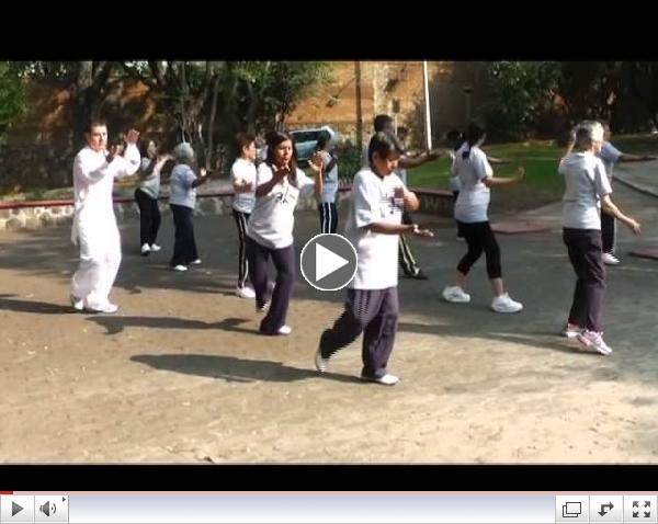 Dia del Tai chi Chi Kung 2013