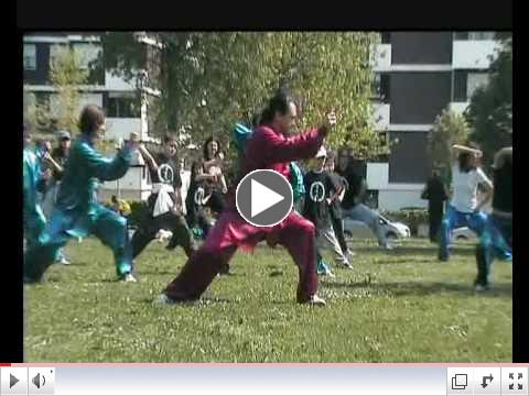 WORLD TAI CHI AND QI GONG DAY 2009