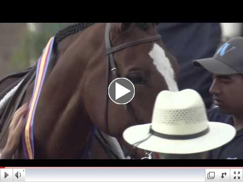 Natalie Templeton and Prophecy win the Onondarka Medal Finals at the Del Mar International Horse Show