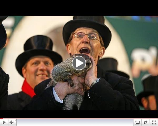 Groundhog Day 2014: Punxsutawney Phil Sees Shadow