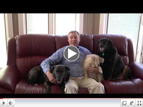 Animal Welfare Initiative: Adopt, Spay & Neuter