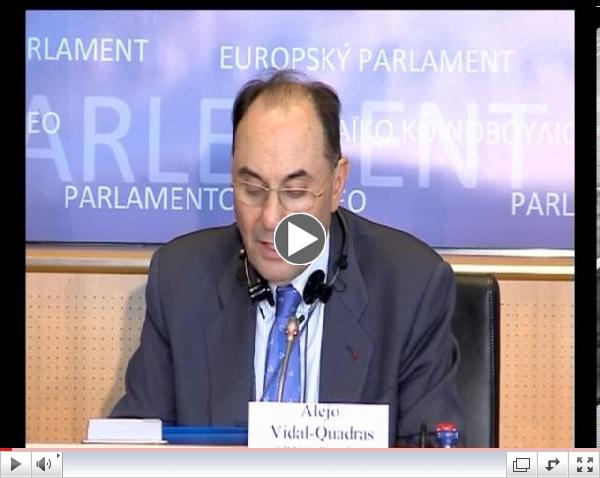 Speech by Dr. Alejo Vidal-Quadras at EP -  March 28, 2013