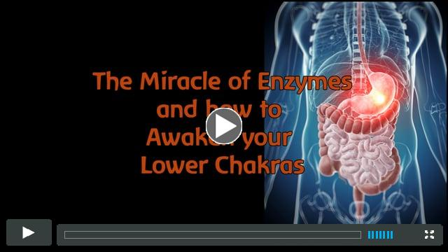 Miracle of Enzymes