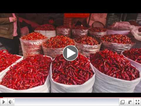 Real Food Travel Adventure - China