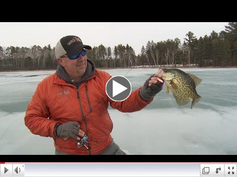 Watch the video above to learn more of Scott's crankbait crappie secrets.
