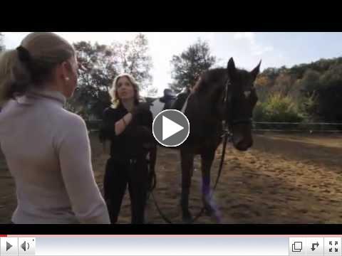 Alchemy in Horsemanship with Dr. Maria Katsamanis [Trailer]