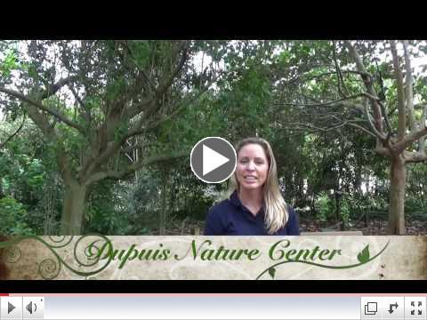 Meet Kim Elliott, CES Education & Training Coordinator at DuPuis Nature Center