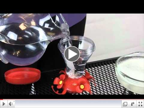 How to Fill and Clean Your Perky-Pet Hummingbird Feeder
