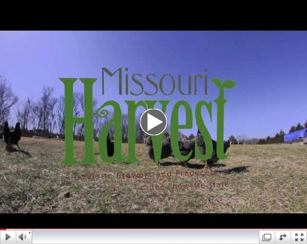 Missouri Harvest (Official Book Trailer) by Maddie Earnest and Liz Fathman