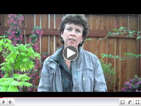 Container Gardening with Karen Chapman