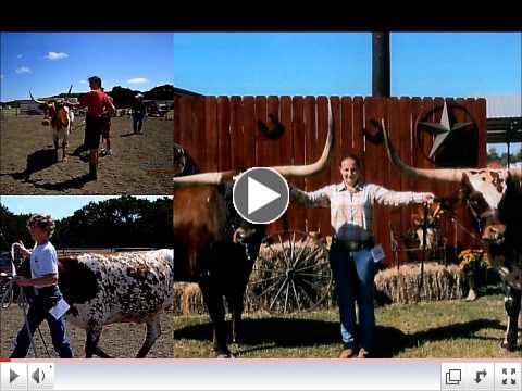 News from ITLA - International Texas Longhorn Association