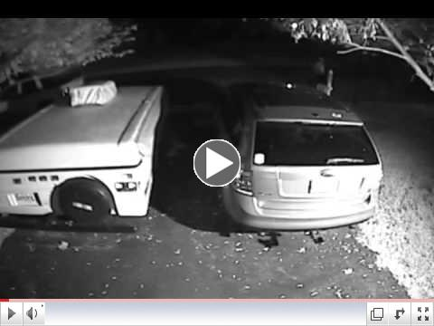 Attempted Theft ftom Auto - Skymist Terace, Olney