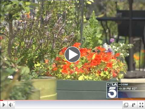 KTLA reporter previews Los Angeles Garden Tour 2011