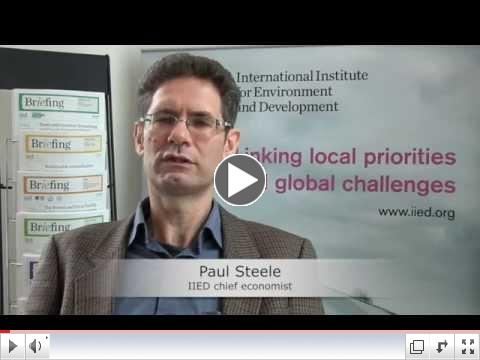 Understanding the SDGs: an interview with Paul Steele/ IIED
