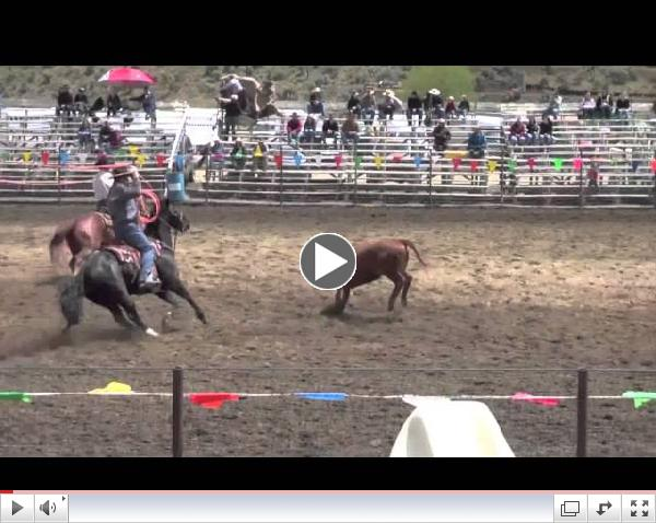 2013 Big Loop Rodeo Cruelty