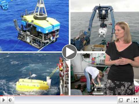 Julie Huber: Microbial Oceanography