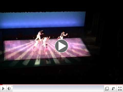 CLICK HERE for a LINK to a VIDEO of the Dorrance Dance Troupe recorded at our field trip!