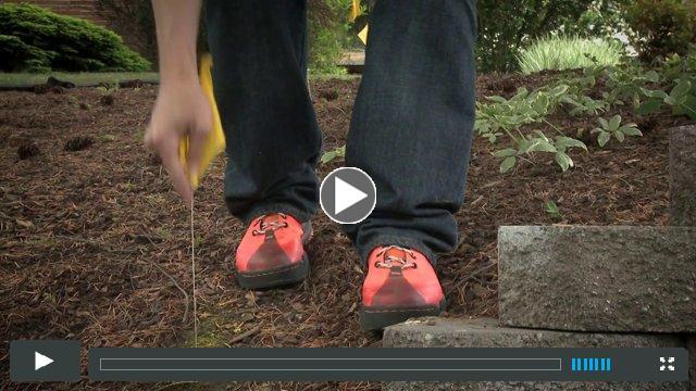 Red's 5 Steps to Safer Digging