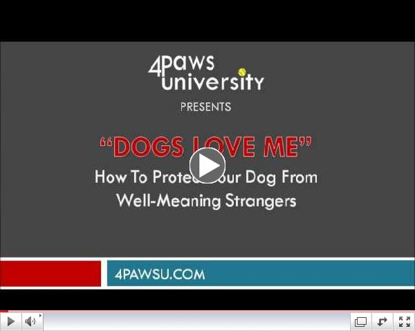 Dogs Love Me:  Protecting Your Dog From Well-Meaning Dog Lovers