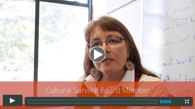 Lesley J. Kabotie (Crow), Cultural Survival Board Member